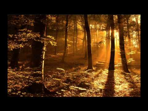 Gregorian Chants - Amazing Grace (**Beautiful Christian song & music**)
