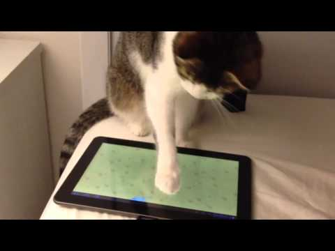 Umka plays with her new tablet