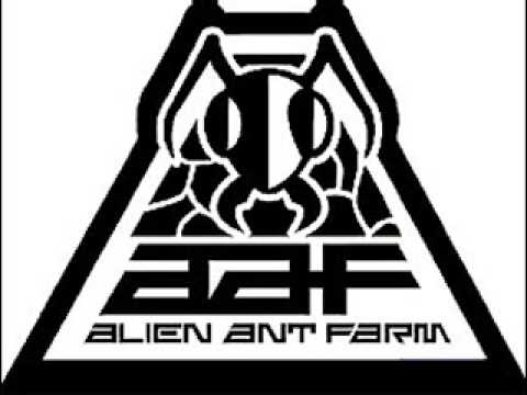 Alien Ant Farm: Bad Morning